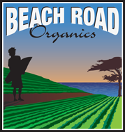 Green and blue Beach Road Organics logo.